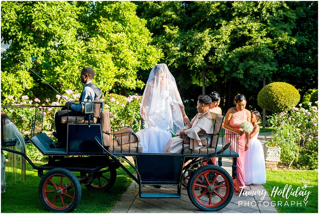 horse and carriage with bride