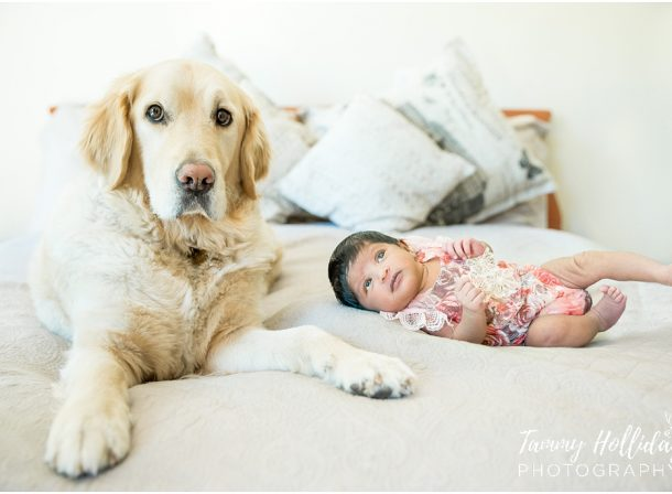 baby lying on bed with white dog