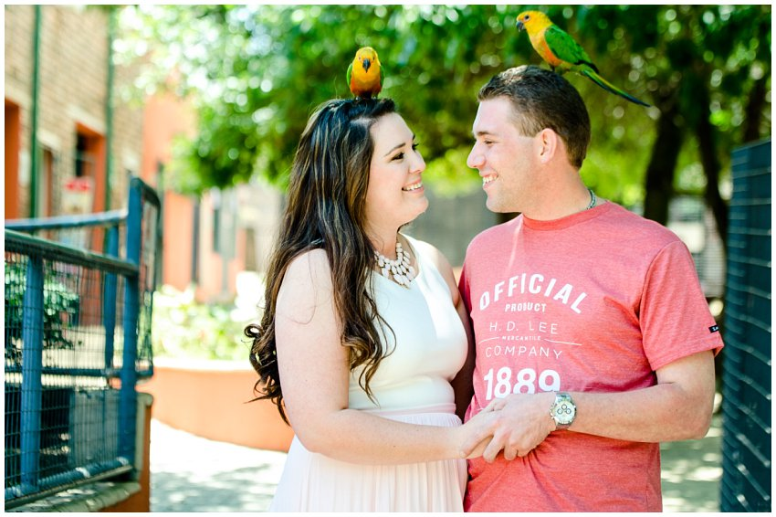 Couple shoot at Lory Park Zoo in Midrand, Casual Engagment photos with wedding photographer in Johannesburg